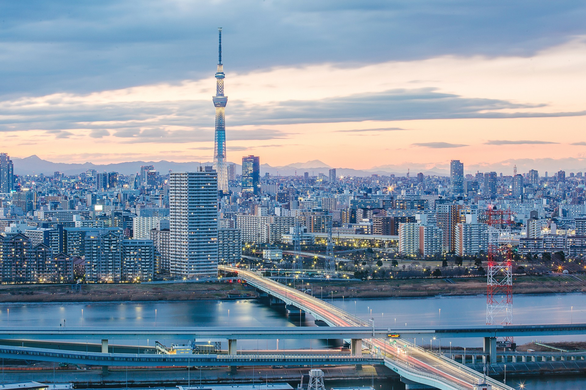 Tokyo Private Jet and Air Charter Flights