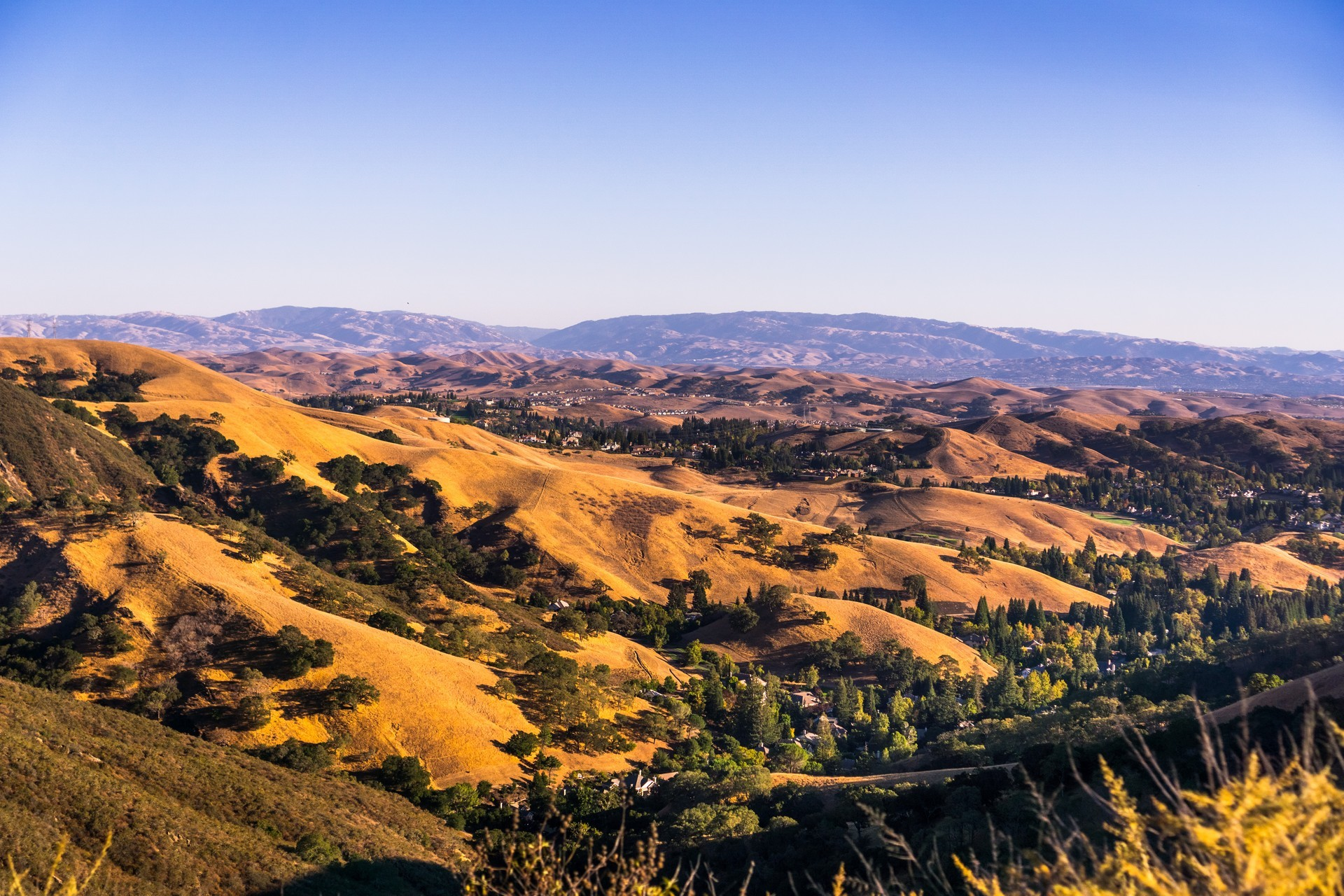 Danville, CA Private Jet and Air Charter Flights