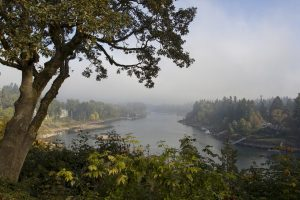 Lake Oswego Private Jet and Air Charter Flights