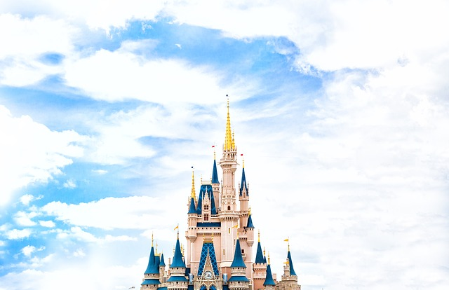 Flying Private to Disney World