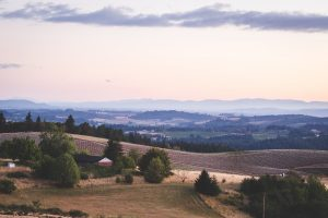 Newberg Private Jet and Air Charter Flights