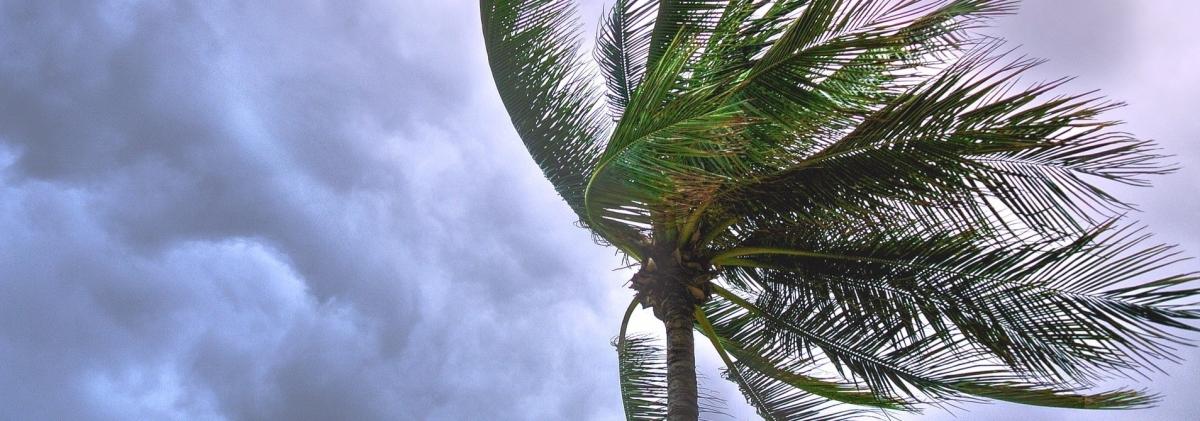 Resultado de imagen para hurricane dorian air traffic