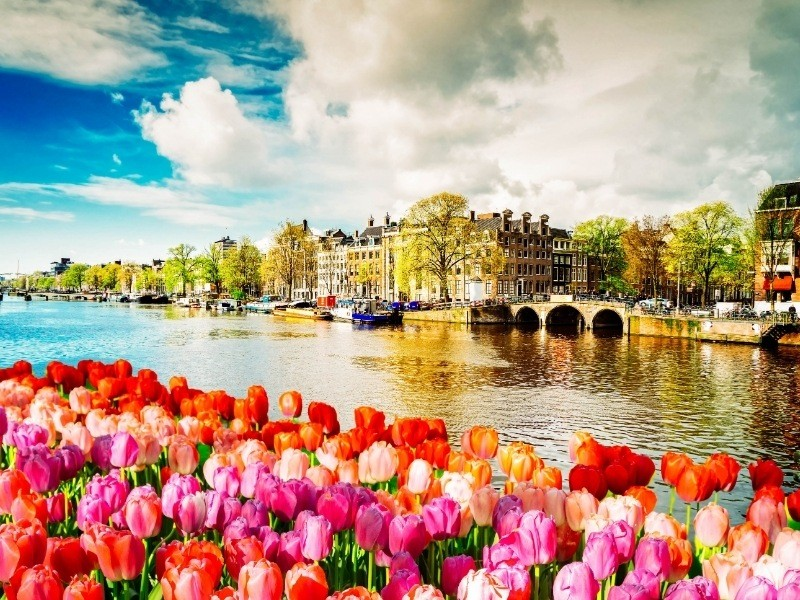 Netherlands Private Jet and Air Charter Flights