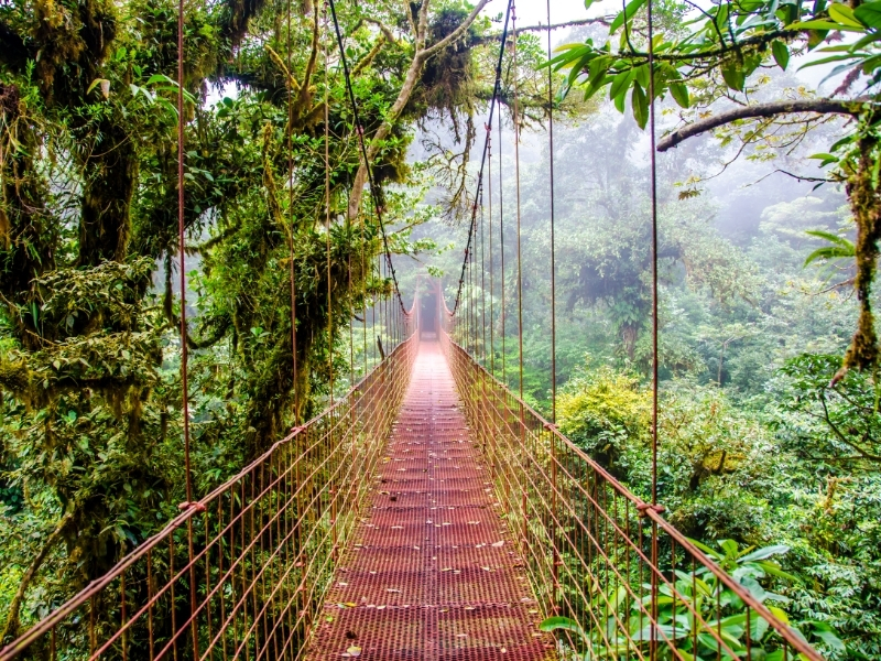 Monteverde Private Jet and Air Charter Flights