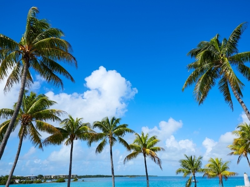 Big Pine Key Private Jet and Air Charter Flights