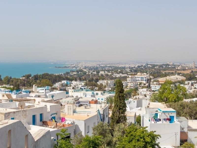 Tunis Private Jet and Air Charter Flights